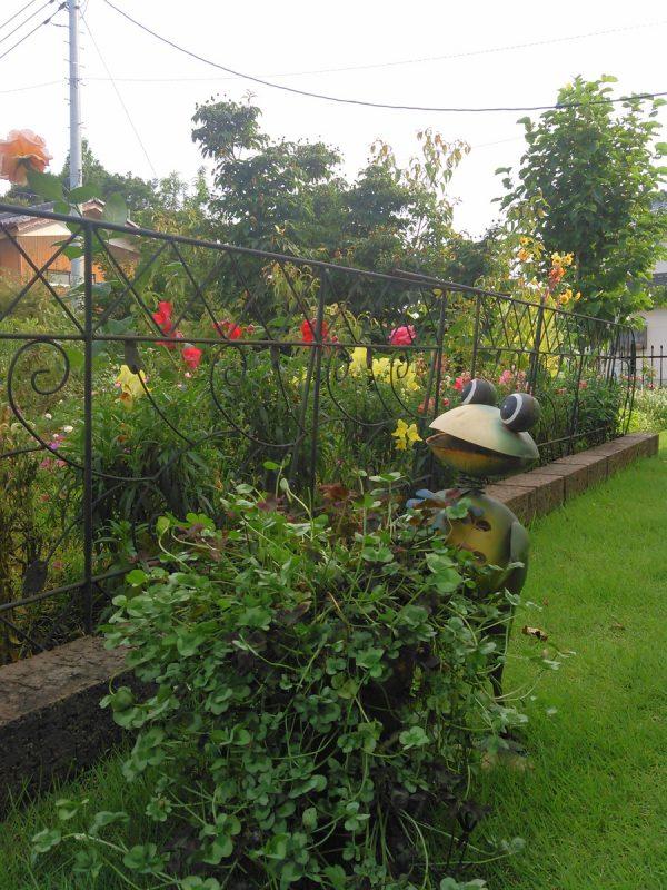 庭の様子です。サムネイル
